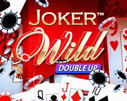 Joker Wild online za darmo