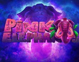 Pink Elephants online za darmo