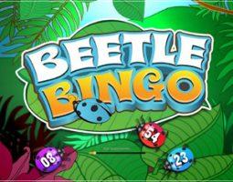 Beetle Bingo online za darmo