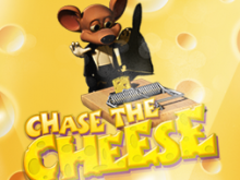 Chase the Cheese Online Za Darmo