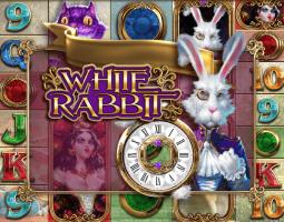 White Rabbit online za darmo