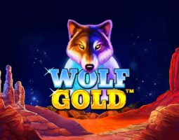 Wolf Gold online za darmo